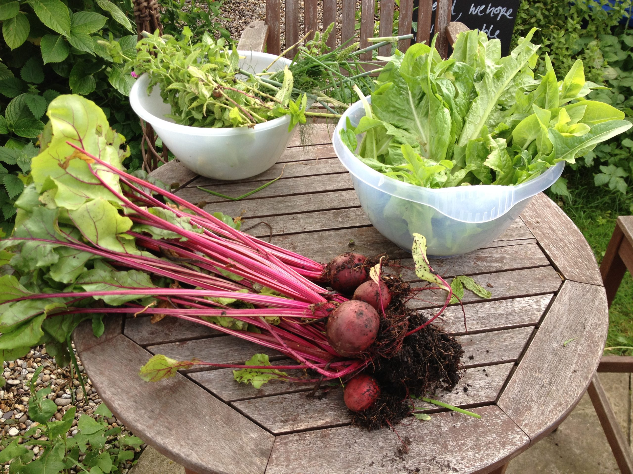 Beetroot grown in the garden at Ann's Pantry